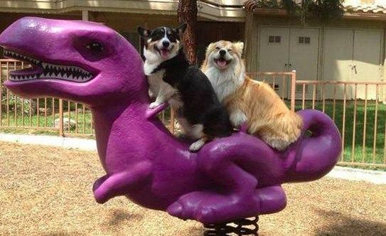 Поход с друзьями в парк развлечений