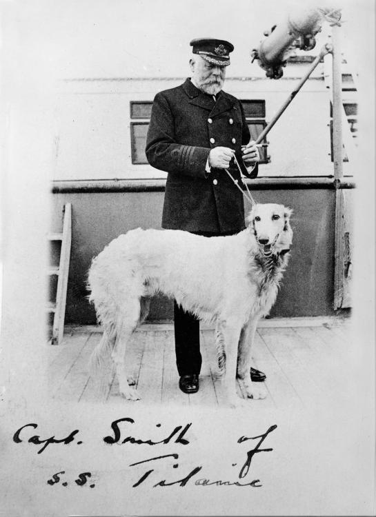 Titanic-dog_31